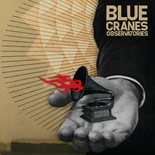 Blue Cranes: Observatories