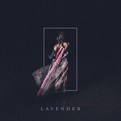 Half Waif: Lavender