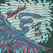 Maybird: Turning Into Water