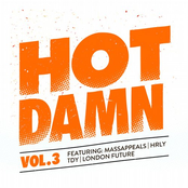 Hot Damn, Vol. 3