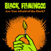 Black Flamingos: Are You Afraid of the Dark?