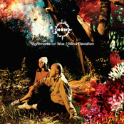 Nightmares On Wax: Mind Elevation