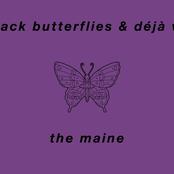 Black Butterflies and Déjà Vu
