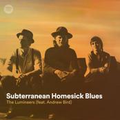 Subterranean Homesick Blues (feat. Andrew Bird)