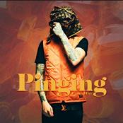 Pinging (6 Figures)