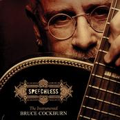 Bruce Cockburn: Speechless