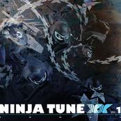 Ninja Tune XX Vol 1