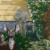 Fiddlehead: Get My Mind Right