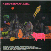 A Saucerful of Pink: A Tribute to Pink Floyd