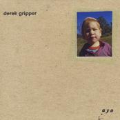Derek Gripper: Ayo