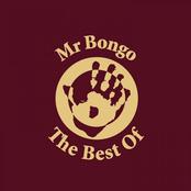 The Best of Mr Bongo (Mr Bongo presents)