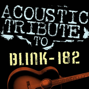 Acoustic Tribute to Blink-182