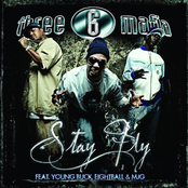 Stay Fly (4 Pack) (feat. Young Buck, Eightball & MJG)