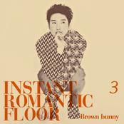 #3. Brown Bunny