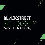 No Diggity (Sam Wilkes & Brian Green Sample Free Remix)