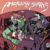 American Sharks: American Sharks