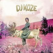 DJ Koze: Amygdala