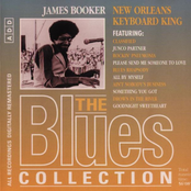 The Blues Collection 79: New Orleans Keyboard King