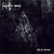 Sjel Av Natten (Re-release 2006)