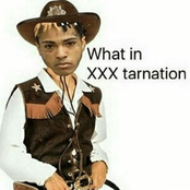 What in XXXTarnation