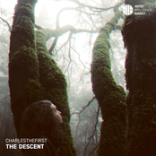 CharlestheFirst: The Descent