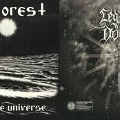 Hate Forest / Legion of Doom (Split)