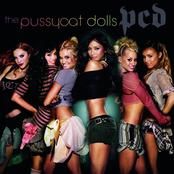 PCD (International Edition)