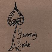 Sean Hayes: Flowering Spade