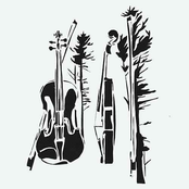 The Wilds Quartets - Single