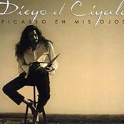 Diego El Cigala: Picasso en mis ojos