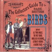 The Birds - The Collectors