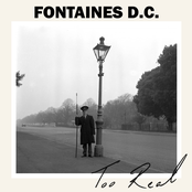 Fontaines D.C.: Too Real