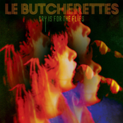 Le Butcherettes: Cry is for the Flies