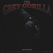 Ramirez: Grey Gorilla