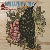 The Wallflowers: Rebel, Sweetheart