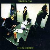 SIBERIA GIG [Disc 1]