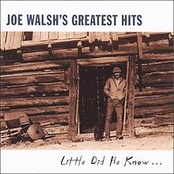 Joe Walsh's Greatest Hits: Little Did He Know