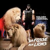 La fosse aux lions (Réédition)