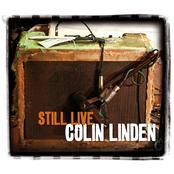 Still Live