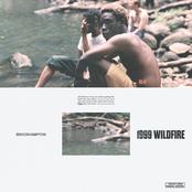 1999 WILDFIRE - Single
