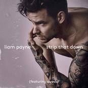 Strip That Down [Single]