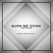 Burn Me Down (Rock Version)