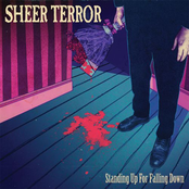 Sheer Terror: Standing Up For Falling Down