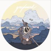 Calpurnia: Greyhound