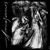 Amesoeurs/Valfunde - Split