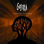 Gojira: L'Enfant Sauvage (Special Edition)