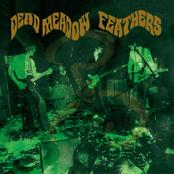 Dead Meadow: Feathers
