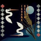 Iguana Death Cult: Nude Casino