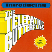 Introducing the Telepathic Butterflies