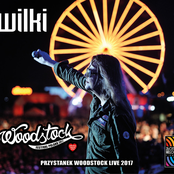 Wilki Live Przystanek Woodstock 2017